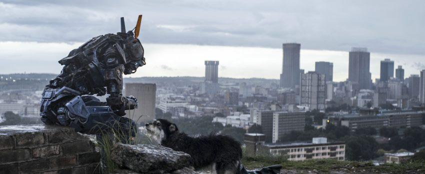 Filmstill aus Neill Blomkamps CHAPPIE (2015), Chappie mit einem Hund vor Großstadtkulisse, Copyright Sony Pictures