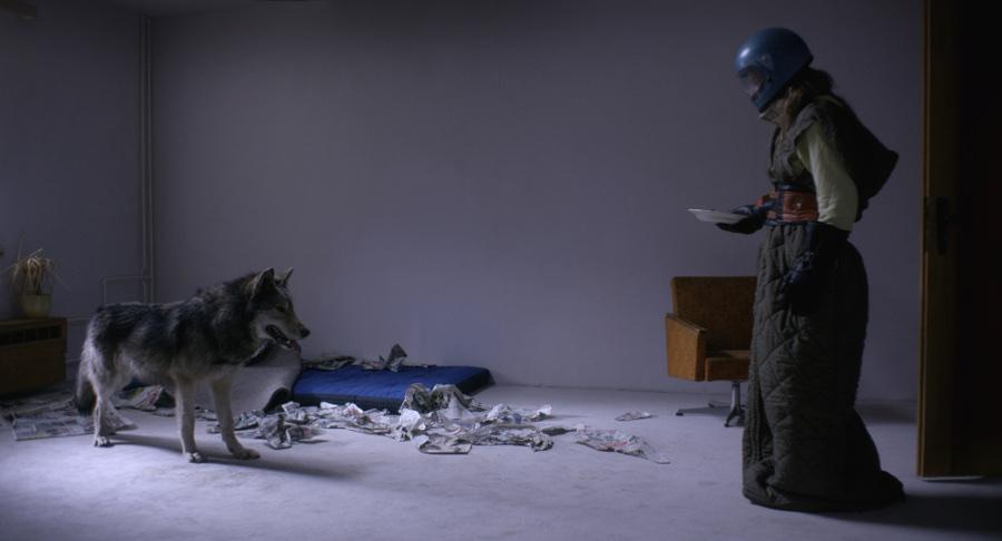 Szenenbild aus WILD (2016) - Ania (Lilith Stangenberg) hält den Wolf in ihrer Wohnung. - © NFP